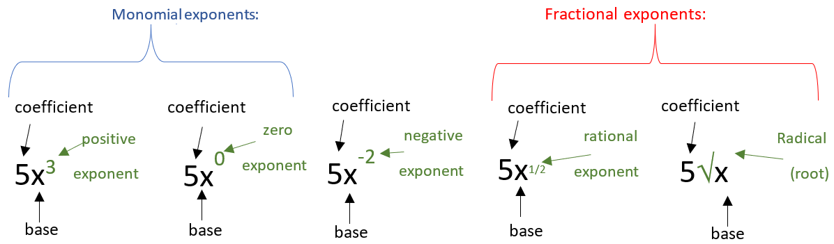What are the 4 types of exponents in the exponential expressions?