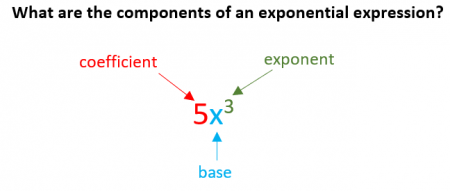 what are the components of an exponential expression